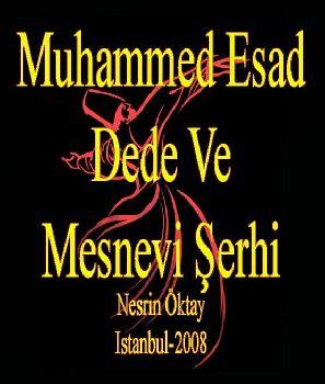 Muhammed Esad Dede Ve Mesnevi Şerhi - Nesrin Öktay