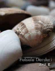 Felsefe Dersleri-Arif K.-296s