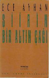 Şiirin Bir Altın Çağı-Ece Ayxan-1993-290