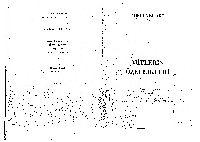 Mitlerin Özellikleri-Mircea Eliade-Çev-Sema Rifat-1993-96s