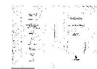 Sohbetler- eziz Mahmud xudayi-1995-336s