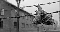 Hapisxana Romanları-1950-1980-Şaziye Ayalı-Balıkesir-2012-220