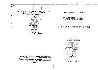 Letifeler-Lamiizade Abdullah Çelebi-Yaşar Çalışqan-1994-375s