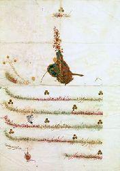 Osmanlı Padişah Fermanları - Ayşegül Nadir