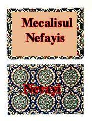 Mecalisul Nefayis