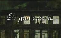 Bir Gün Axşam-1985-Azerbaycan Cizgi Filmi