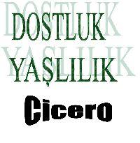 Yaşlılıq ve Dostluq-Marcus Tullius Cicero-ayşe sarıgöllü-türkan tunqa-2013-71s