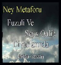 Fuzuli Ve Şeyh Qalib Divanlarında Ney Metaforu-Bolkar Öztekin