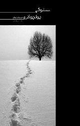 Sevgi Yolçuları-Hikayeler-Hüsen Vahidi-Ebced-1391-98s