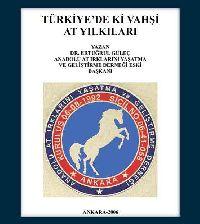 Türkiyedeki Vahşi At Yılkıları - Ertuğrul Gülec