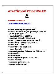 Atasözler Ve Deyimler-Toplayan-Ali Berazende-Türk-326s