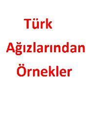 Türk Ağızlarından Örnekler