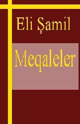 Eli Şamilin Meqaleleri - Makale