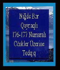 Niğde Bor Qaynaqlı 176-177 Numaralı Cönkler Üzerine Tedqiq